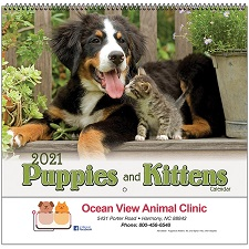 Cover of Puppies and Kittens 2021 Calendar