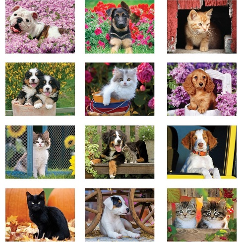 Monthly Scenes of Puppies and Kittens 2021 Calendar