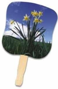 Daffodils Handheld Fan